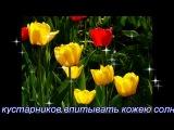 М.А.Огинский - Полонез-Прощание с Родиной  3.17 Красивая музыка и не только! Получите удовольствие!